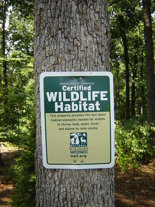 A sign in a Marietta backyard indicating this is a habitat certified by the National Wildlife Federation