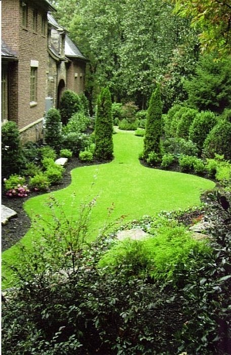 A Buckhead backyard with a curvaceous zoysia lawn and evergreen shrubs, including two Emerald Arborvitae planted as sentinels.