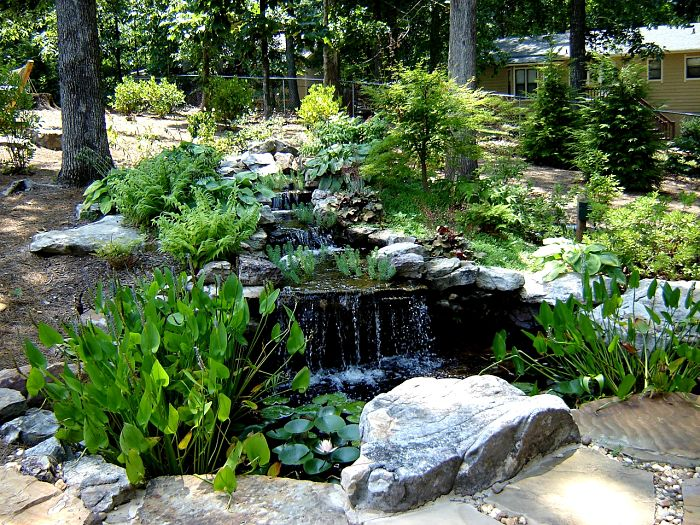 A Marietta Georgia backyard waterfall flowing into a pond with water plants.