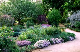 Drought Resistant Landscape - drought tolerant garden design ideas