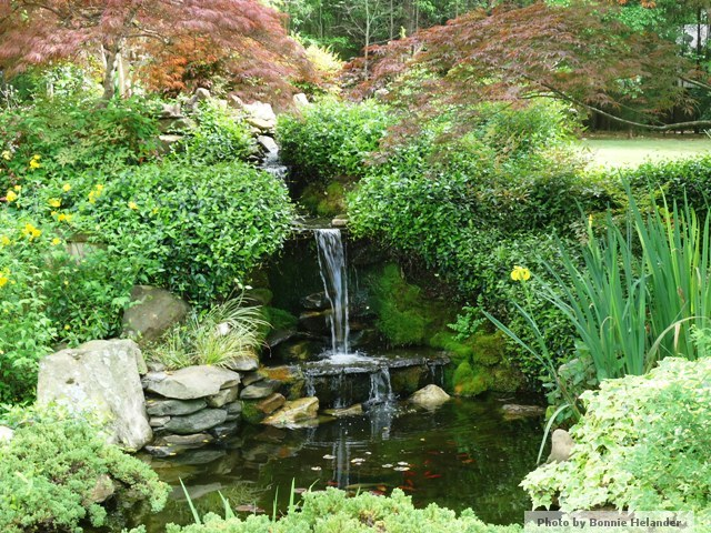 Atlanta landscape architecture for Japanese koi pond garden design
