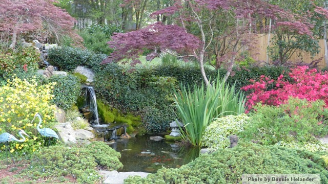 Atlanta landscape architecture for Ornamental pond